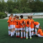 Sparkassen-Cup E-Jugend 15.06.2019 0011