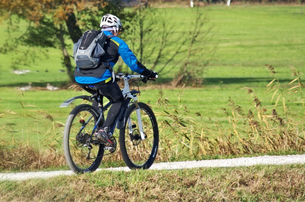cyclists-1782947_1920