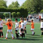 Sparkassen-Cup F-Jugend 16.06.2019 0008